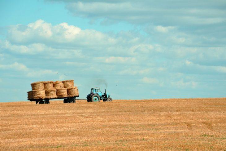 Gasol vinnare för jordbrukssektorn